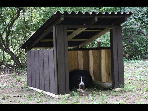DIY dog house plans for large dogs YouTube