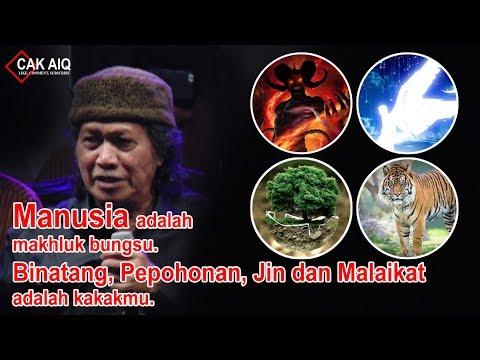 Cak Nun: Manusia adalah makhluk bungsu. Binatang, pepohonan, jin dan malaikat adalah kakakmu
