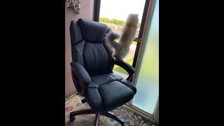 Минутный урок(Как собрать компьютерное кресло?)Minute Lessons
