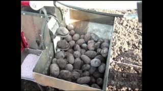 Weima wm 1050. Sadzenie ziemniaków