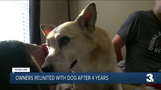 Owners reunited with dog after 4 years
