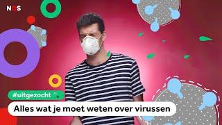 Kan een virus (zoals corona) iedereen dood laten gaan? | UITGEZOCHT #11