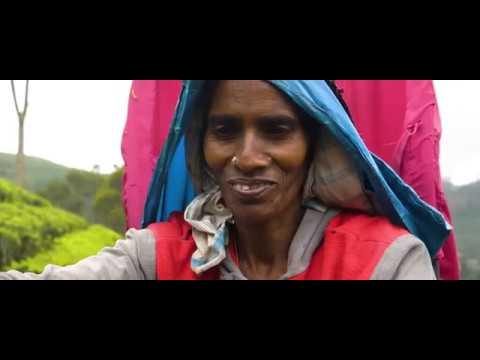 Exotic Sri Lanka Photography Tour 2018