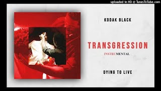 Kodak Black - Transgression (BEST INSTRUMENTAL) Video