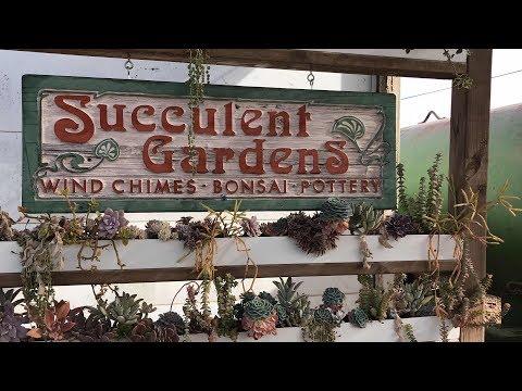 TOUR OF SUCCULENT GARDENS IN MONTEREY BAY CALIFORNIA