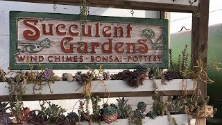 Video TOUR OF SUCCULENT GARDENS IN MONTEREY BAY CALIFORNIA download MP3, 3GP, MP4, WEBM, AVI, FLV Juni 2018