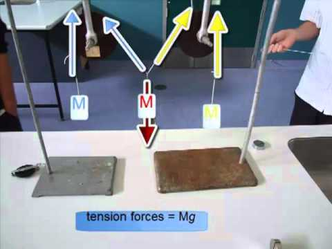 physics experiment of force and equilibrium View notes - physics lab report 6 from phy 2091-e4 at florida institute of tech experiment 6 vectors and static equilibrium of forces by: umeh emeka physics 2091-e4.