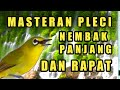 Masteran Pleci Nembak Panjang Dan Rapat Mempercepat Pleci Buka Paruh Dan Pleci Gacor  Mp3 - Mp4 Download