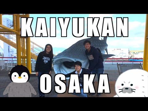 KAIYUKAN〜Biggest Aquarium in Osaka #37