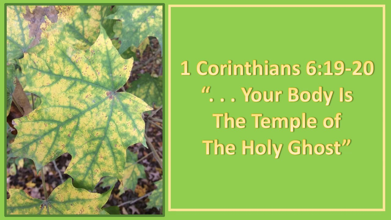 1 Corinthians 6:19-20,   Your body is the temple of the Holy Ghost,KJV  singalong w lyrics,F