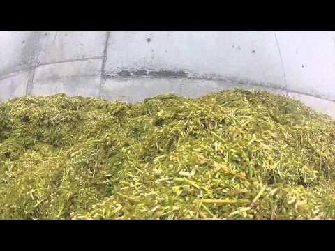 Whole Crop Barley Samco Bag Press
