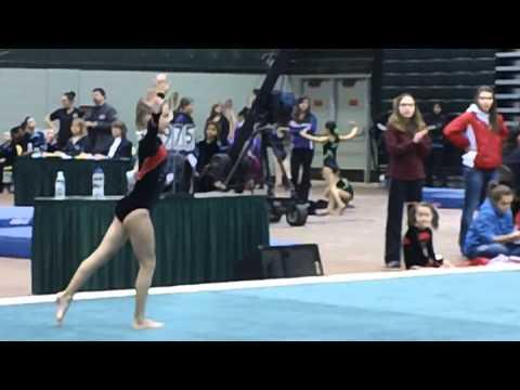 Grayson Floor Level 4 State Meet - Anchorage Gymnastics Association Team