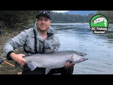 Camping & Fishing On The Vedder River