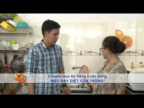 Mẹo diệt côn trùng - Vui Sống Mỗi Ngày [VTV3 – 20.07.2015]