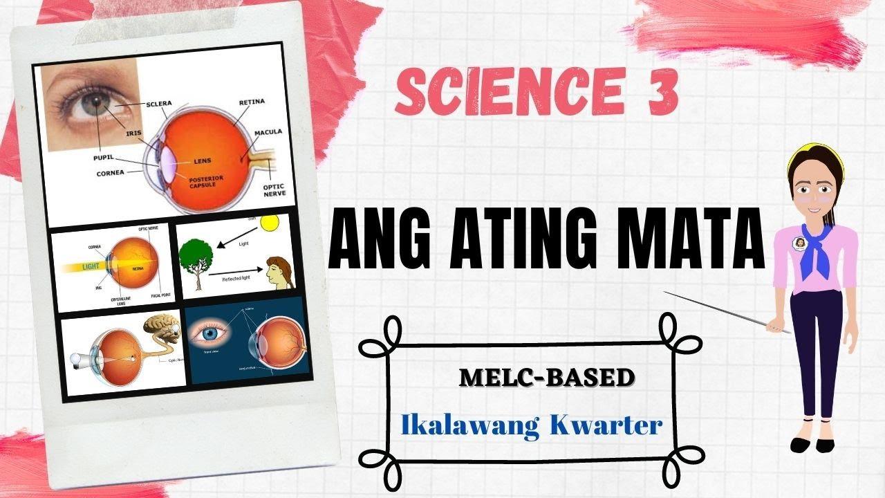 ANG ATING MATA    BAHAGI NG MATA    TUNGKULIN NG BAHAGI NG MATA    SCIENCE 3    SECOND QUARTER