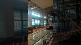 Changi airport singapore metal drop show