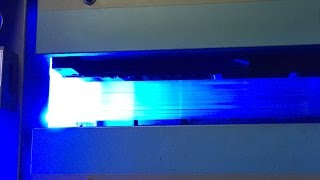 AMS LED UV prints 30,000 sheets per hour on Web Offset
