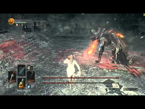 [Dark Souls 3] Pure Sorcerer vs Twin Princes (Lv82, 9 Vit, 70 Int)