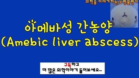 아메바성 간농양 (Amebic liver abscess)
