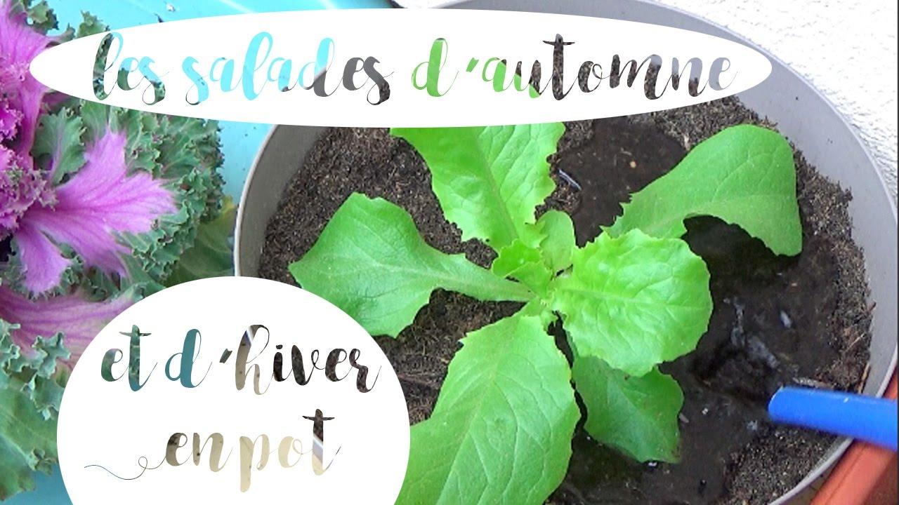 100 Fantastique Suggestions Planter Des Salades En Pot