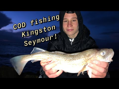 COD Fishing In The Bristol Channel! (Catch And Cook!)