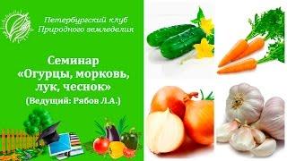 Семинар «Огурцы, морковь, лук, чеснок»