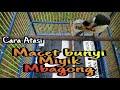 Cara Perawatan Burung Cendet Setelah Mabung Macet Bunyi Miyik Mbagong  Mp3 - Mp4 Download