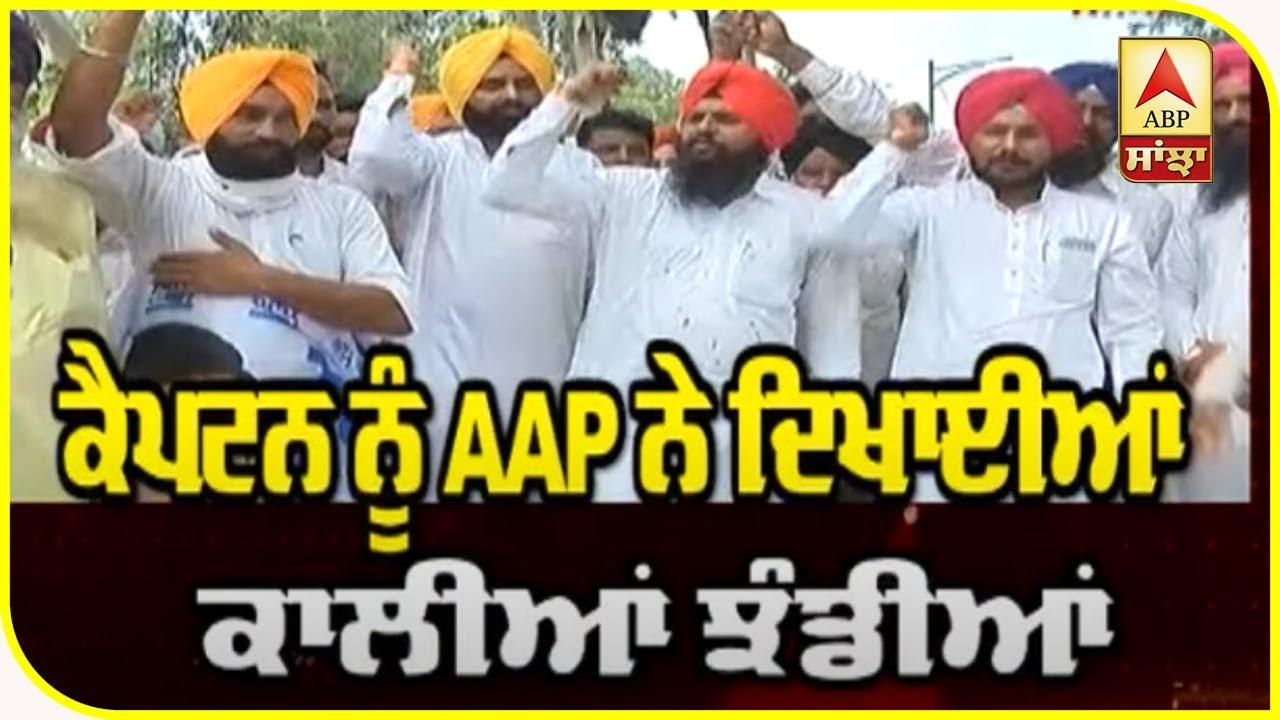 AAP ਨੇ Captain ਨੂੰ ਕਿਉਂ ਦਿਖਾਈਆਂ ਕਾਲੀਆਂ ਝੰਡੀਆਂ ? ABP Sanjha