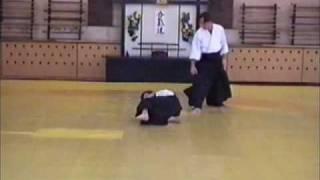Базовая техника Айкидо 3 кю - 2 часть (Basic techniques of Aikido 3 kyu - Part 2)