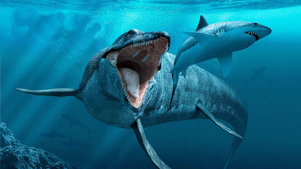 Sea Monsters - Australian National Maritime Museum |Scariest Prehistoric Sea Creatures