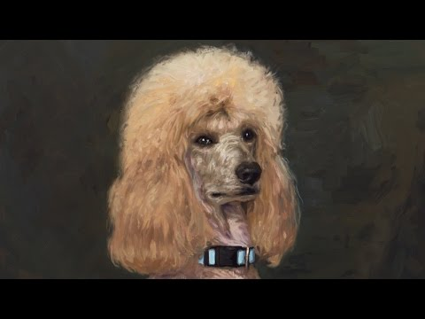 Painting Demo: Poodle Head