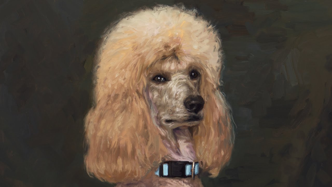 Painting Demo Poodle Head Youtube