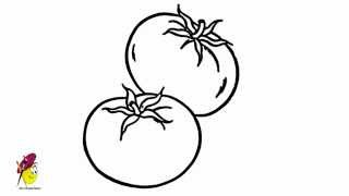 Tomato - How to draw Tomatoes - Fruits and Vegetables