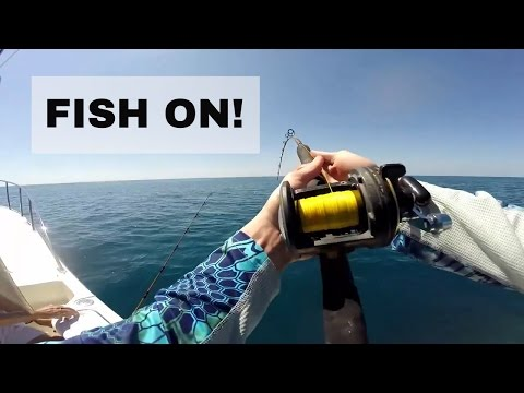 Florida Offshore Fishing (Marco Island)