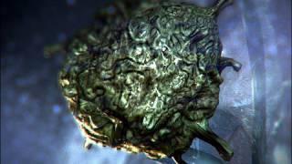 Parasite Invades Eye