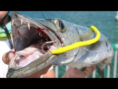Fish CANNOT Resist My HOMEMADE Lure! EPIC Topwater Barracuda Fishing