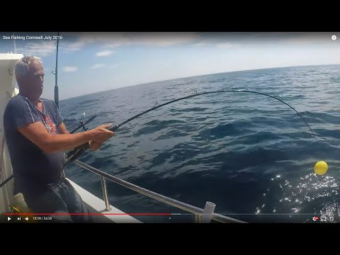 Sea Fishing Cornwall July 2016
