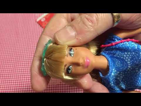 barbie-fashionista-number-43-fashion-pack-unboxing-and-review