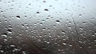 Rainy Day Background Video - No Sound