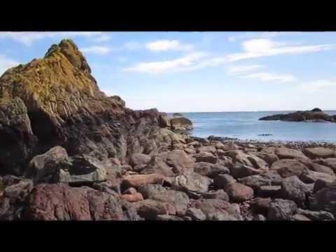 St. Abbs Head, Schottland - Eine Wanderung an 100 Meter hohen Klippen