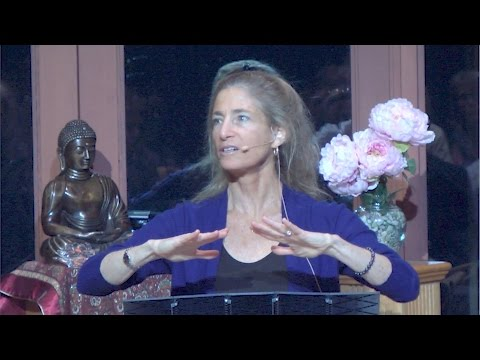 "Tara Brach on ""Play a Greater Part"" – Part 1 - Bodhisattva for our Times"