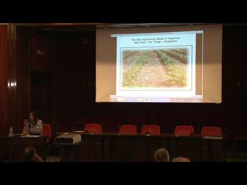 Ecological and economic implications after 15 year of transgenic soybean in the River Plate Basin