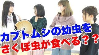 メンバー1リアクションが面白いリーダー太田和さくらに、カブトムシの...
