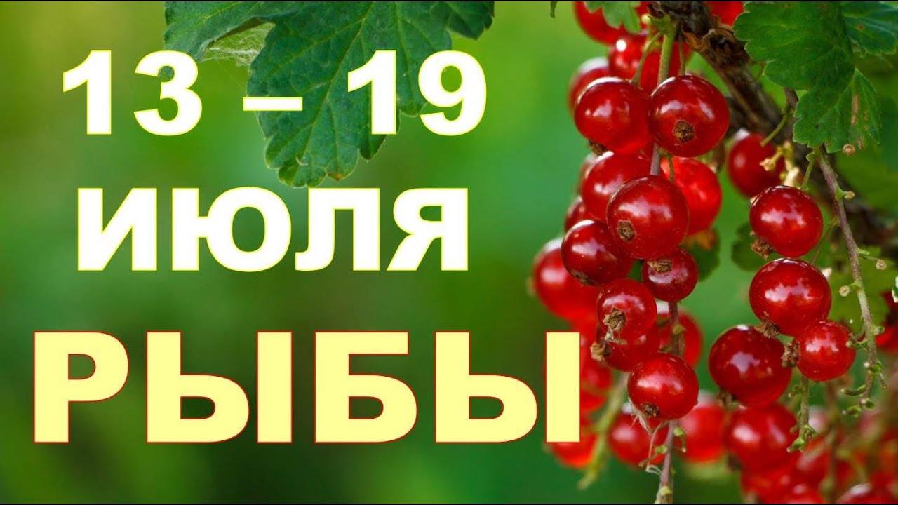 ♓ РЫБЫ. 🍨 С 13 по 19 ИЮЛЯ 2020 г. 🌴 Таро прогноз