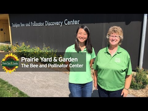 Prairie Yard & Garden: Bee and Pollinator Center