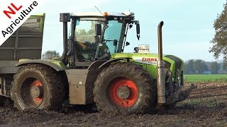 Claas Xerion & New Holland T7070 Blue Power in the mud | Mais | Verhoef | Netherlands.