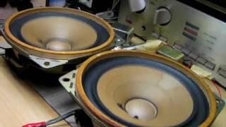 test Mitsubishi Speaker unit MB6291 16cm DIATONE (Bass I Love You)