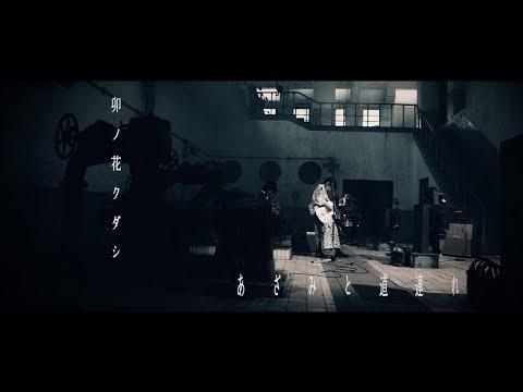【MV】あざみと道連れ / 卯ノ花クダシ