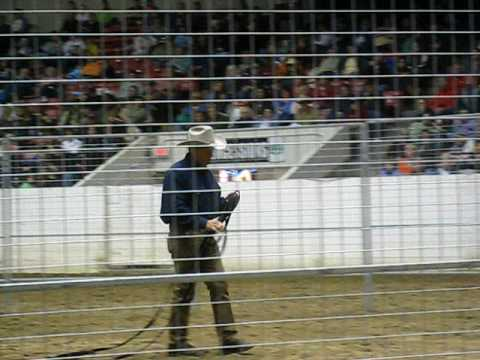 Monty Roberts loading a horse with the Equiface Saver-Ohio 2009