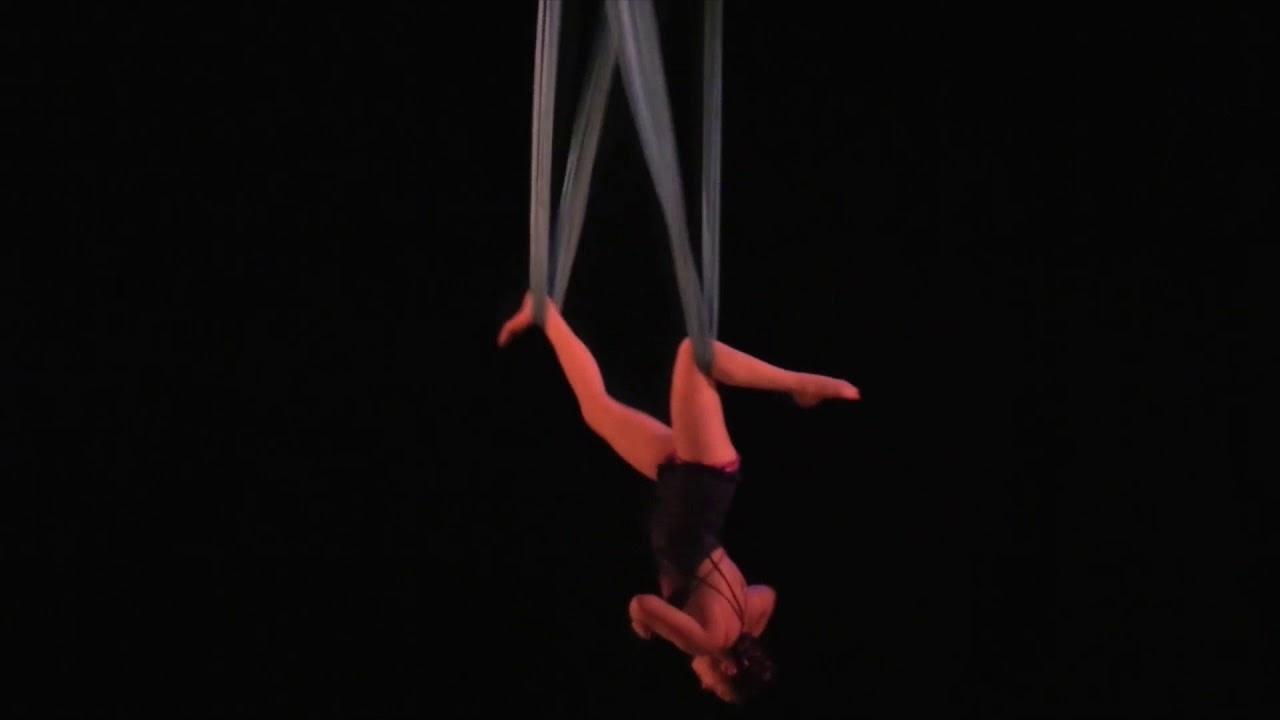 Buy now arts pdf aerialist professional